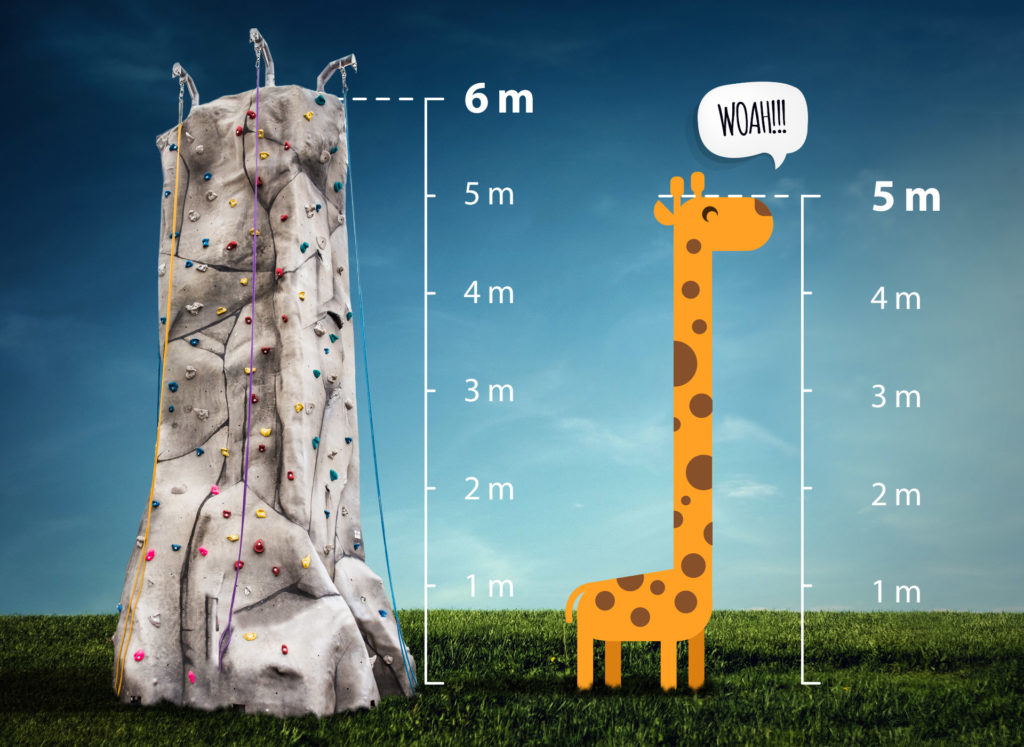 climbing-wall-and-giraffe