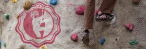 climbing_skills_banner