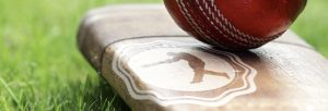 Skill_Clinic_banner_logo_cricket